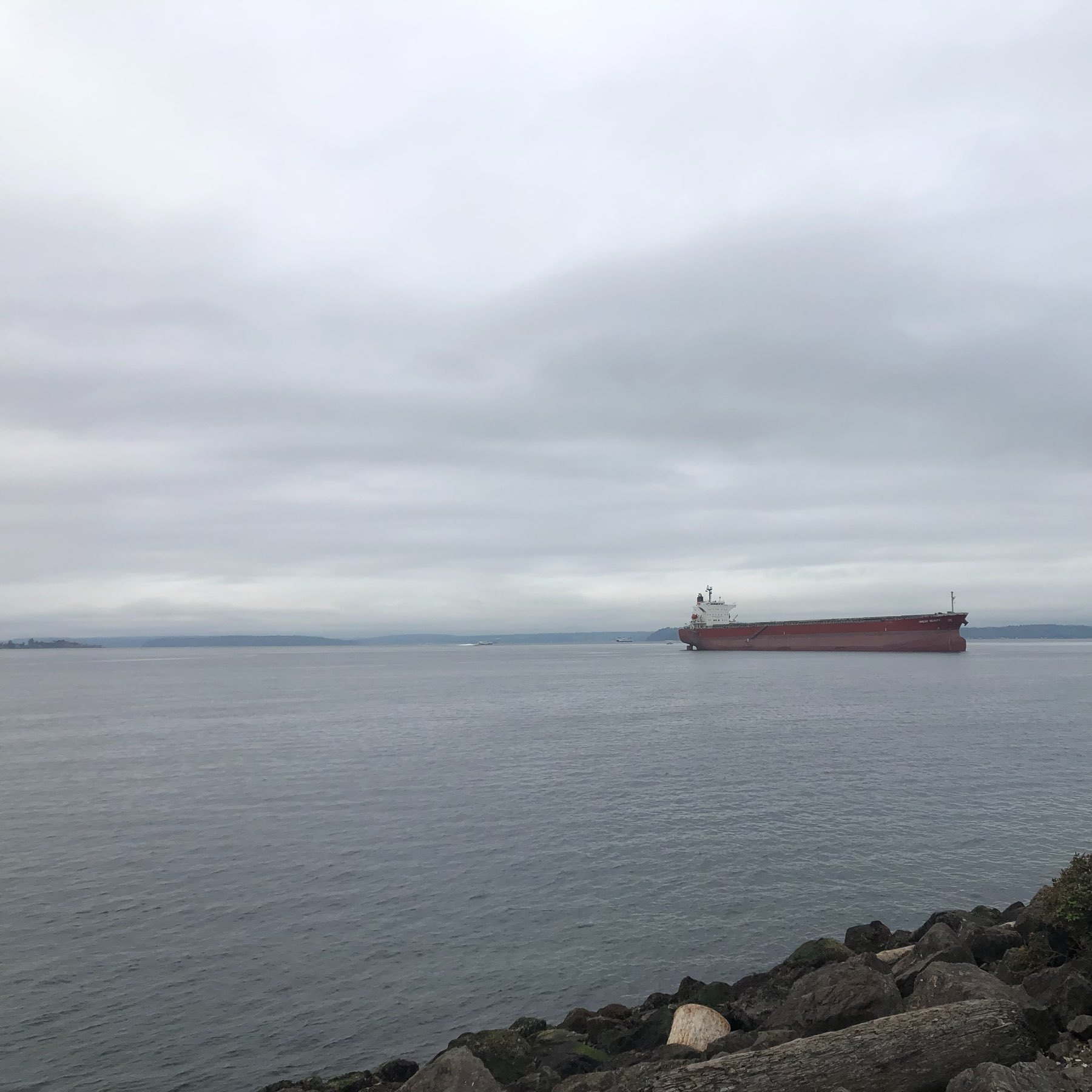 A low red barge floats on a gray and gloomy Elliott Bay.