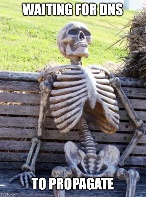 A skeleton on a park bench. Text reads: Waiting for DNS to propagate