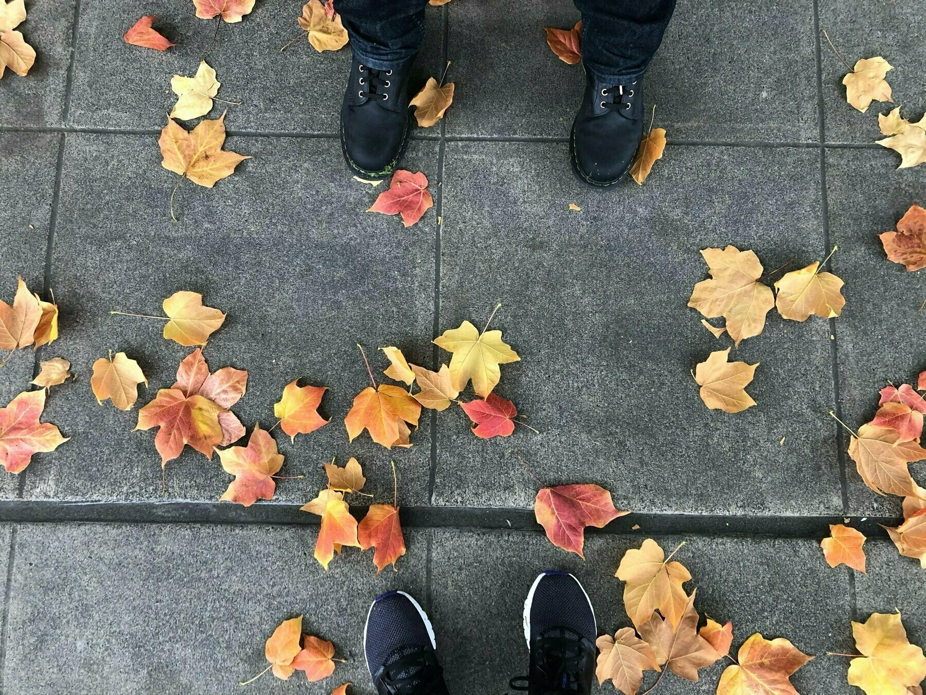 Orangey-red leaves scattered across a pale gray sidewalk. Cheri & P's toes peep into the photo.