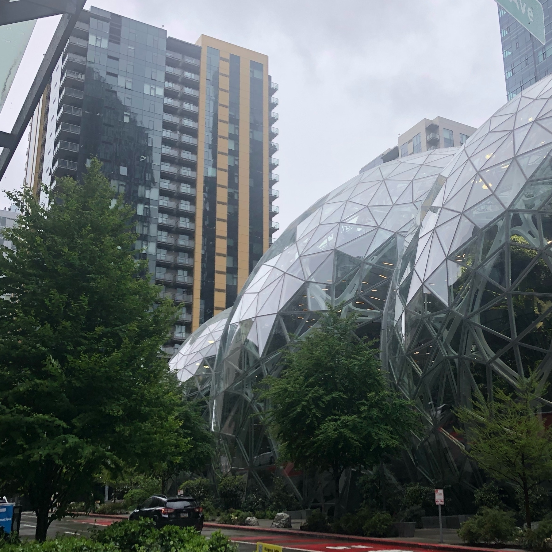 Green trees next to the Amazon HQ on a hazy wet day.