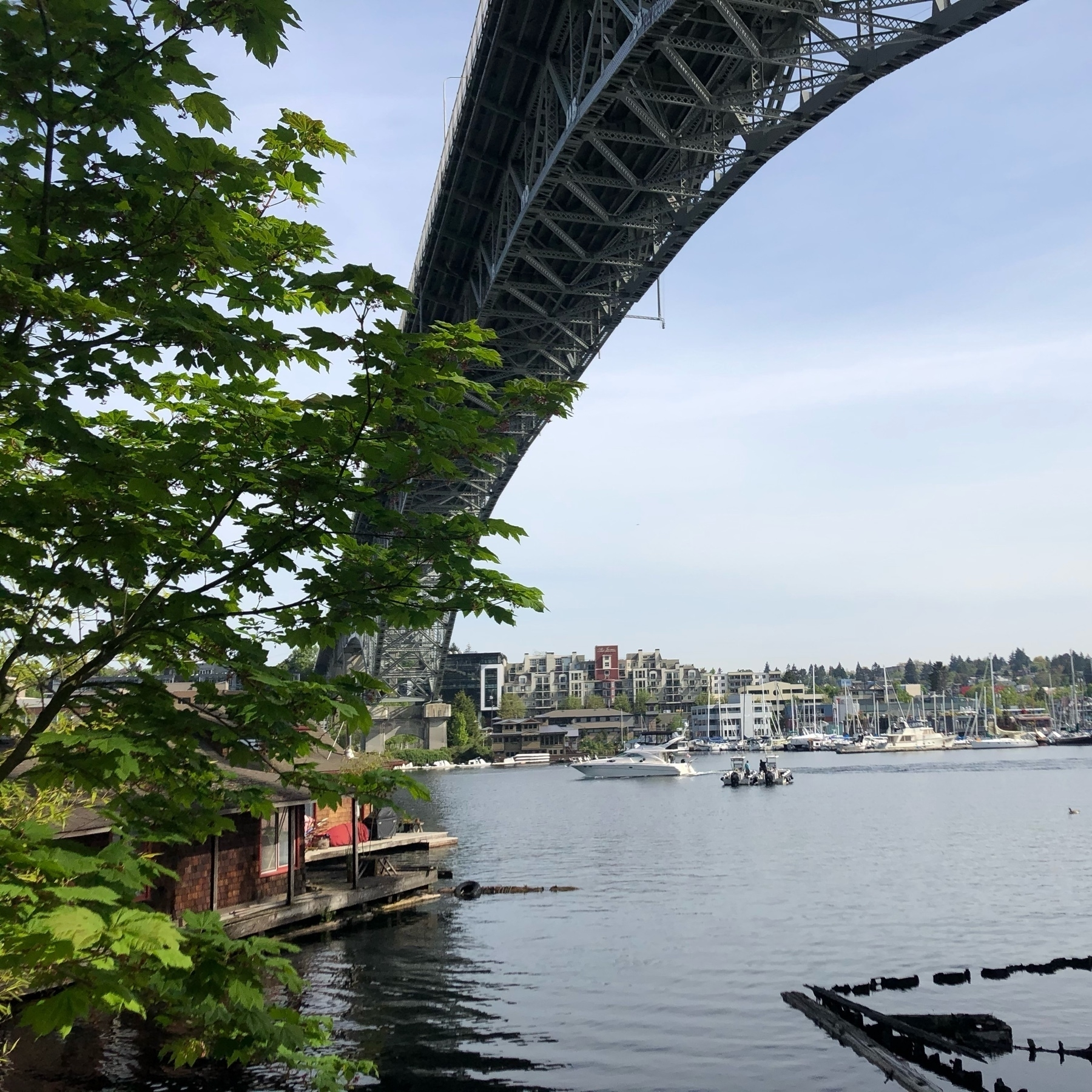 A tall bridge arches over lake union. Many boats in the distance.