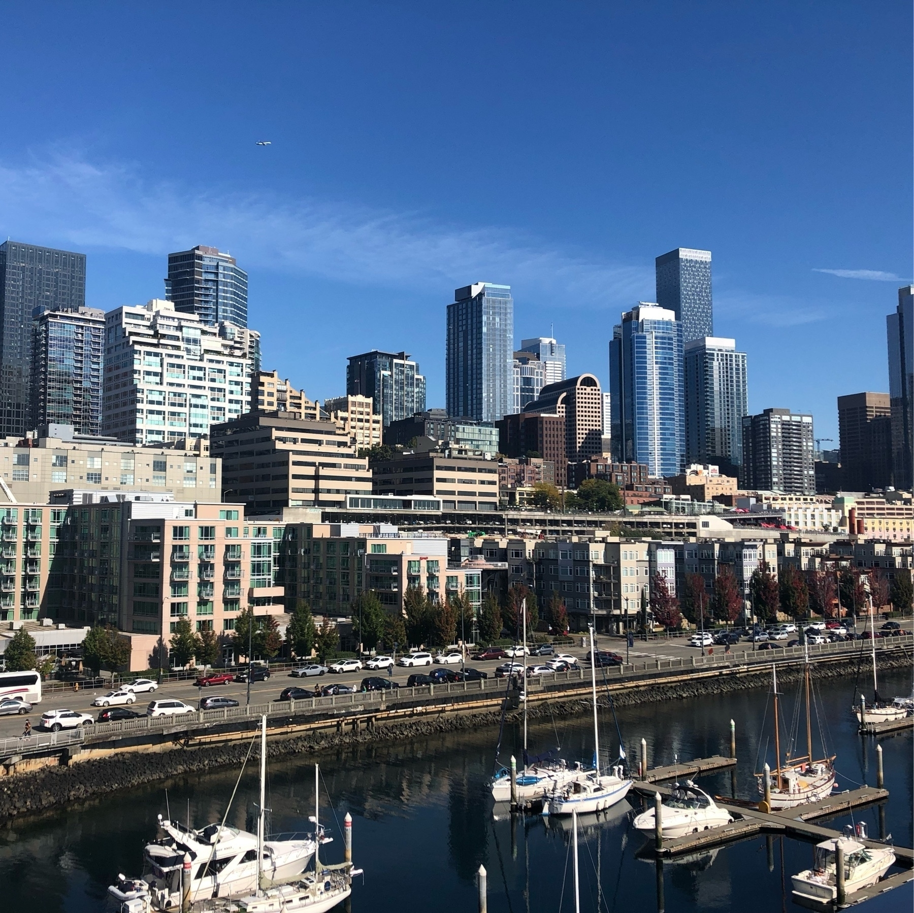 The seattle skyline on a sunny day. steel and glass towers. Below, a marina with motor boats and sail boats