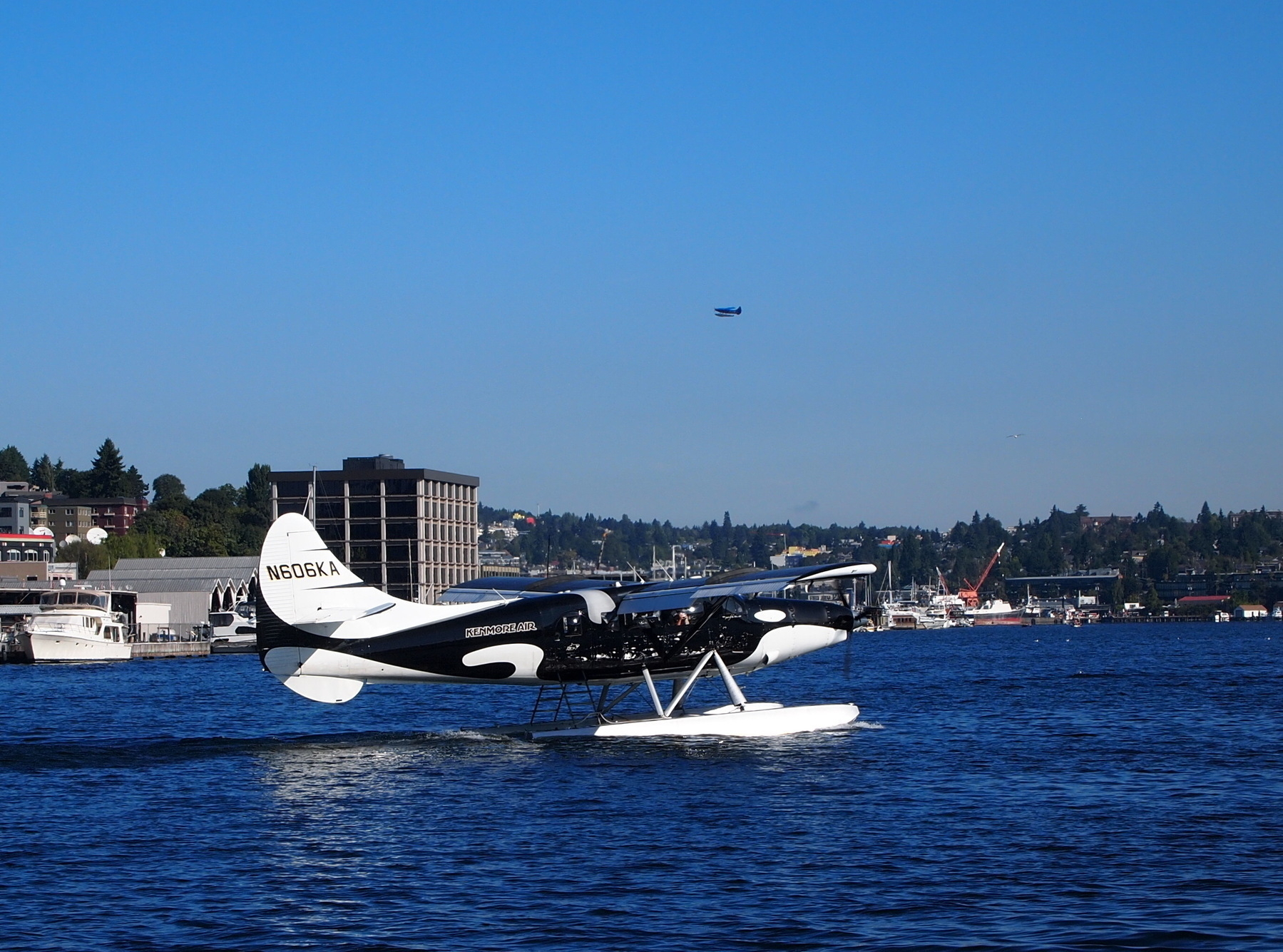 Another large seaplane from Kenmore Air. This one is painted black and white like an Orca whale!
