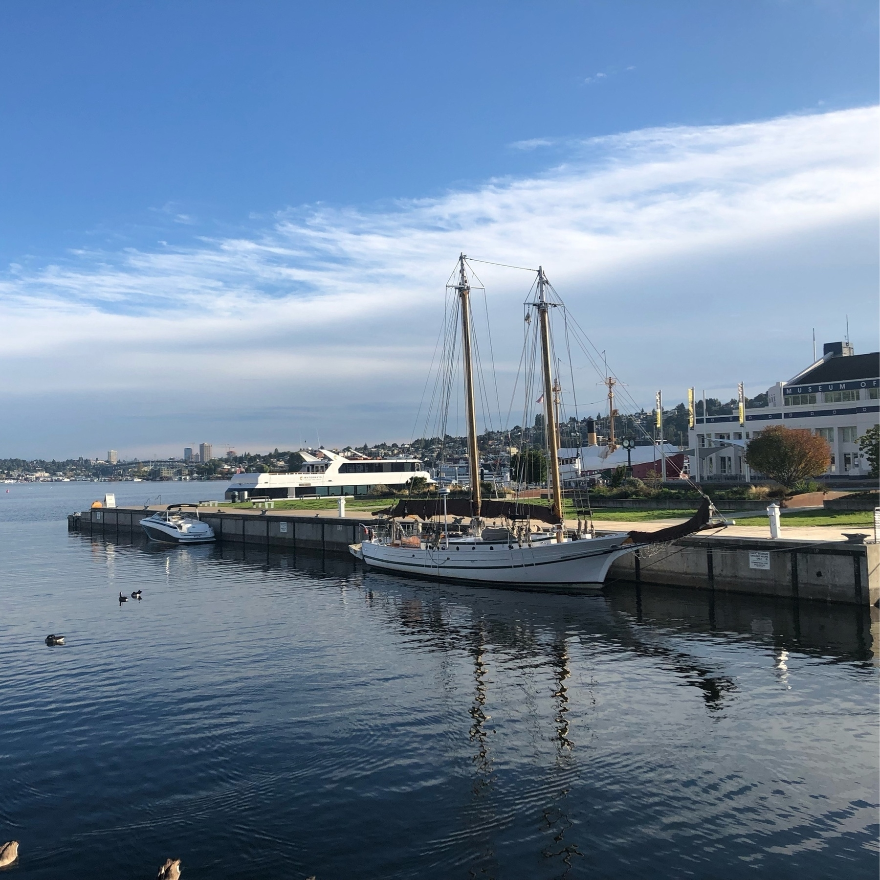 Three ships on south lake union. Ripply reflective water. The closest ship has sails to the masts. A few Canadian Geese dot the water. A very boaty photo.
