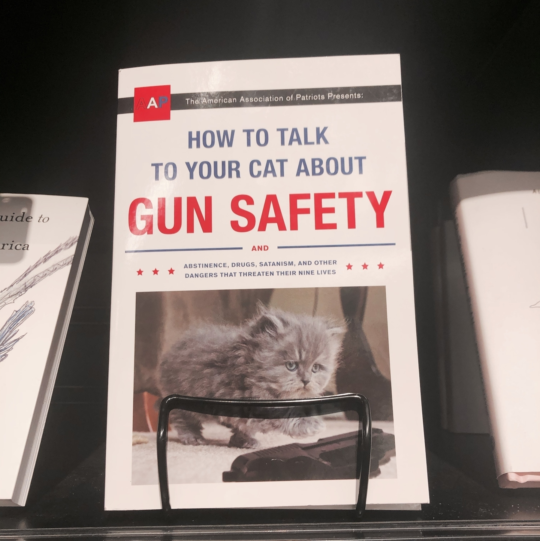 A book called how to talk to your cat about gun safety.