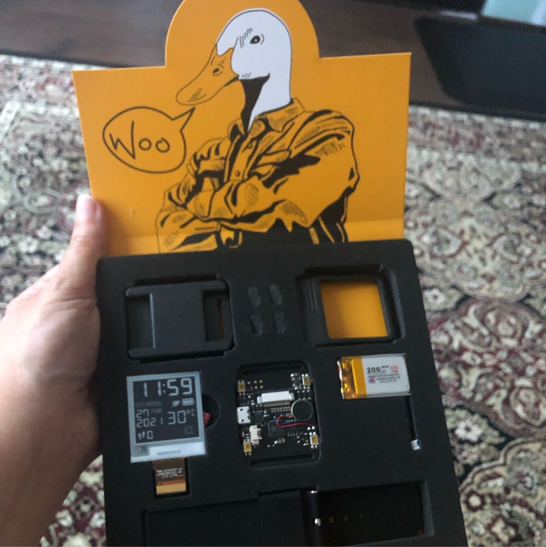 The opened box with the ESP32 board and e-paper display. An illustration of a goose man saying WOO on the inner flap