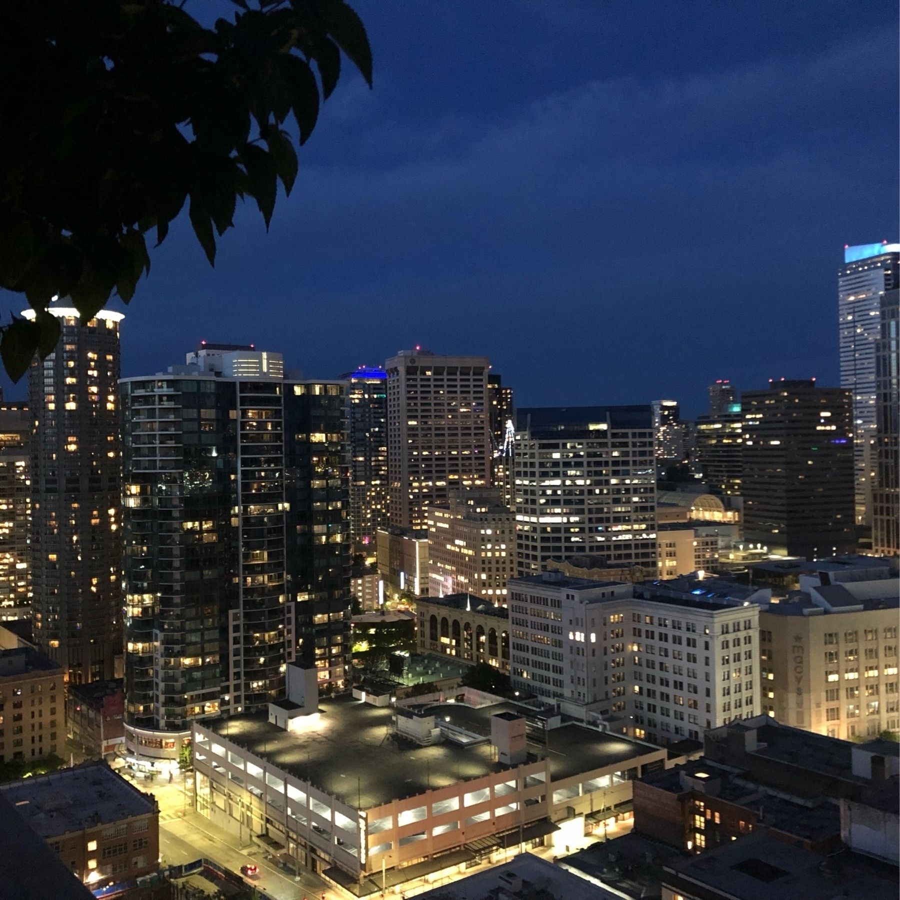 A darker blue Seattle skyline at twilight. Glittery and dark. Windows are gold with light.